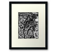 Gator I Framed Print