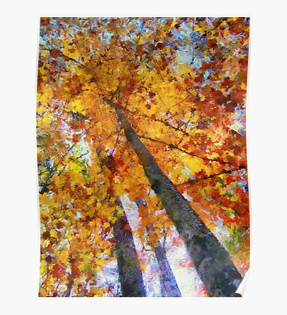 Autumn Trees In The Sky Poster