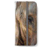 Pachyderm iPhone Wallet/Case/Skin