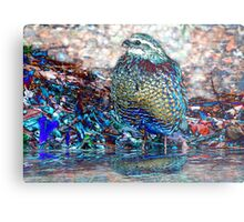 22. Let's Go Wading Metal Print