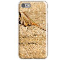 pheasant flight iPhone Case/Skin