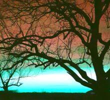 ViewsFromTheAether Tree Silhouette Sticker