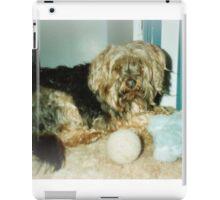 Silky terrier, My toys! iPad Case/Skin
