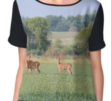 Stag Party Chiffon Top