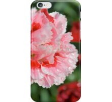 Pink Mini Carnation iPhone Case/Skin