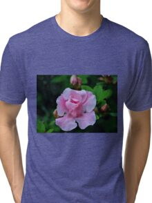 Raindrops On Pink Rose Tri-blend T-Shirt