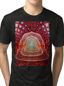 Alex Grey Colourfull 12 Tri-blend T-Shirt