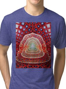 Alex Grey Colourfull 12 Tri-blend T-Shirt