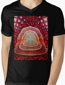 Alex Grey Colourfull 12 Mens V-Neck T-Shirt