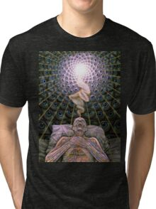 Alex Grey Colourfull 13 Tri-blend T-Shirt
