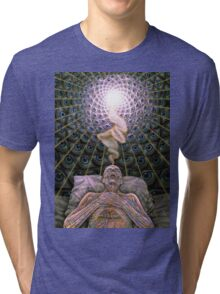 Alex Grey Colourfull 13 Tri-blend T-Shirt