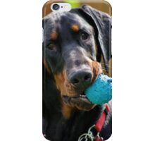 Mr Darcy Wants to Play iPhone Case/Skin