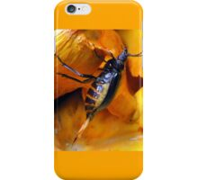 Beetle With Ovipositor iPhone Case/Skin