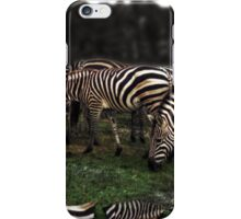 A Zeal of Zebras iPhone Case/Skin