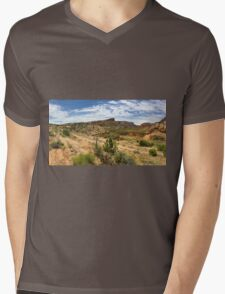 Navajo Country: Tsegi Canyon Mens V-Neck T-Shirt