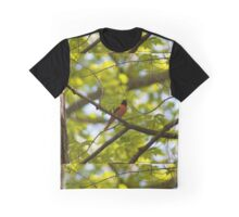 Baltimore Oriole Graphic T-Shirt