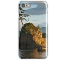 Lone Tree on a Rock at Sunset iPhone Case/Skin