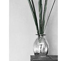 B&W vase with greenery Photographic Print