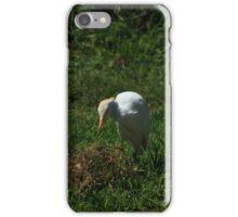 Egret in a Pasture iPhone Case/Skin