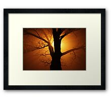 Abstract Sunset with Tree  Beautiful Nature Framed Print