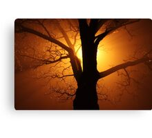 Abstract Sunset with Tree  Beautiful Nature Canvas Print