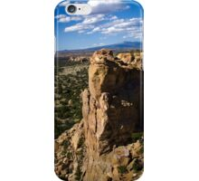 New Mexico Landscape iPhone Case/Skin