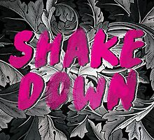 Shake Down by Vin  Zzep