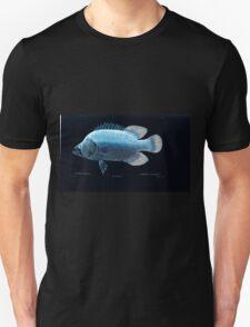 Natural History Fish Histoire naturelle des poissons Georges V1 V2 Cuvier 1849 133 Inverted Unisex T-Shirt