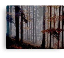 Colorado Trees Series Canvas Print
