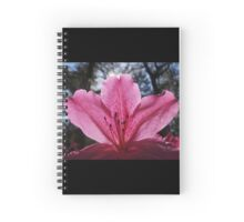 Florida Azalea Spiral Notebook