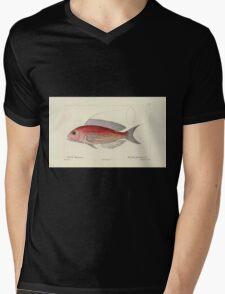 Natural History Fish Histoire naturelle des poissons Georges V1 V2 Cuvier 1849 093 Mens V-Neck T-Shirt