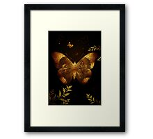 Iron Butterfly Framed Print