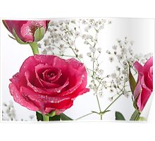 Pink sparkly roses Poster