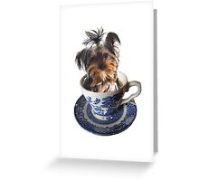 Teacup Terrier Greeting Card