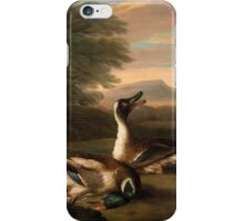 German School, 17th Century. Two drakes in Landscape,  iPhone Case/Skin