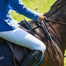 Horse Jumping 3 by peaky40
