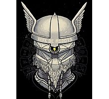 Viking Robot Photographic Print
