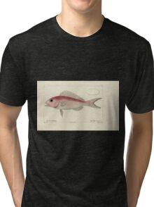 Natural History Fish Histoire naturelle des poissons Georges V1 V2 Cuvier 1849 094 Tri-blend T-Shirt