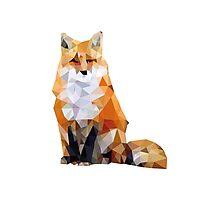 Geometric Fox Photographic Print