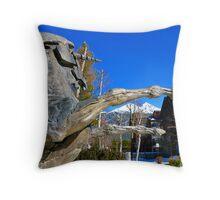 Unicorn the Symbol of Seefeld in Tirol, Austria Throw Pillow