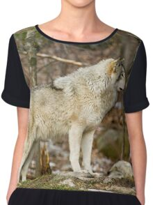Solitary Timber Wolf Chiffon Top