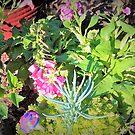 Lil garden along the path by ♥⊱ B. Randi Bailey