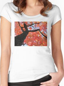 Black Gum Tree Women's Fitted Scoop T-Shirt