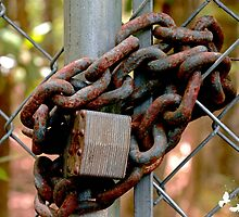 Rusty Lock and Chain by TJ Baccari Photography