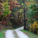 The Road to Grampa's Farm by Bryan D. Spellman