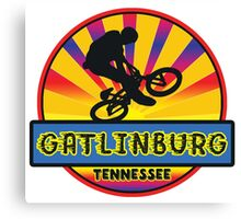 MOUNTAIN BIKE GATLINBURG TENNESSEE BIKING MOUNTAINS Canvas Print