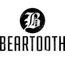 BEARTOOTH BAND disgusting agressive Photographic Print