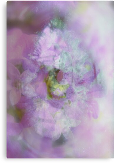 See the World through Flowers - JUSTART © by JUSTART