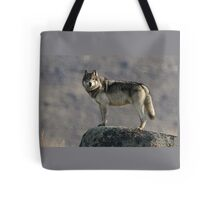 The Wolf's Appraisal Tote Bag