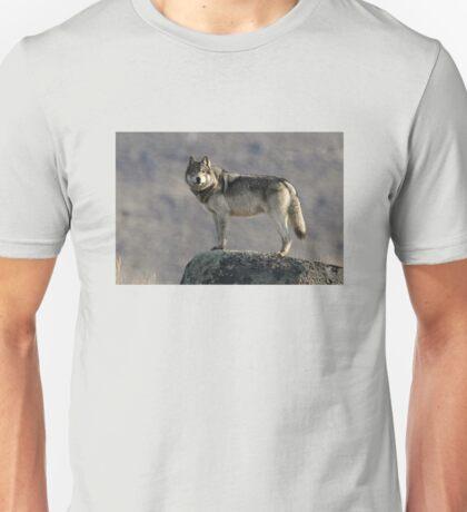 The Wolf's Appraisal Unisex T-Shirt